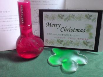 2010.12.27ヘッドスキンケアセラム&クリスマスギフト.jpg