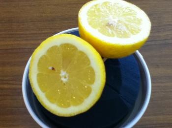 さわやかな初夏のフルーツアレンジ レモン①.JPG